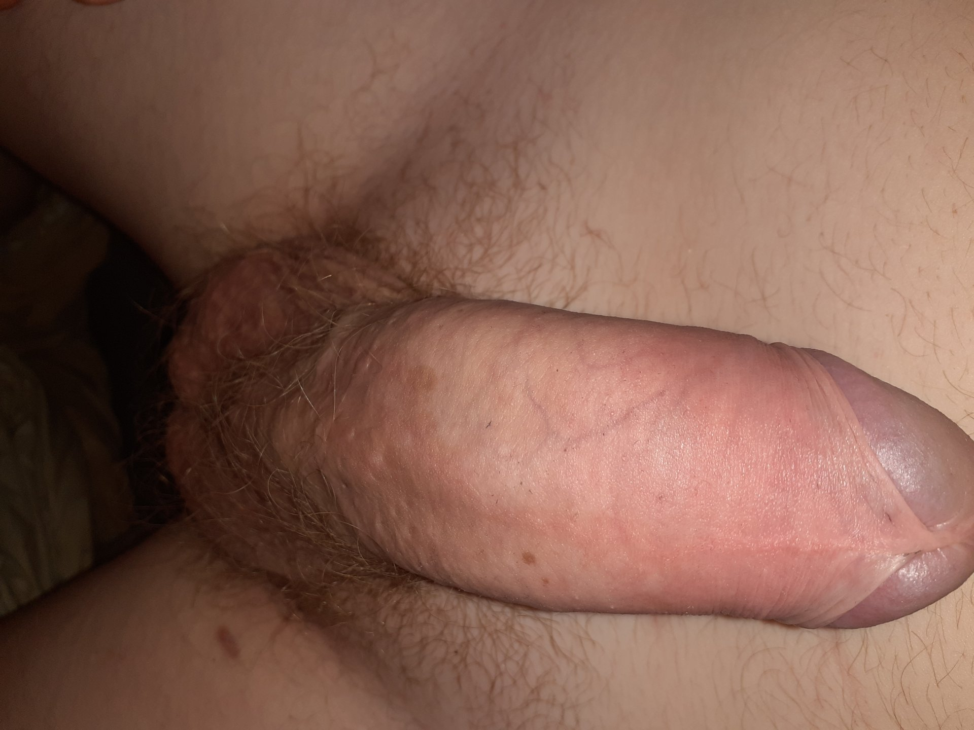 Sexbom aus Limburg,Belgien